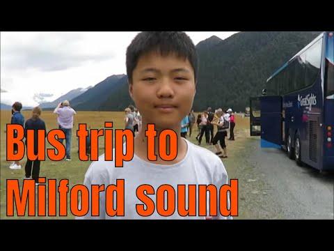 Bus trip to Milford sound, New Zealand