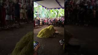 Video barongan ebege wandi somawangi banjarnegara download MP3, 3GP, MP4, WEBM, AVI, FLV Agustus 2018