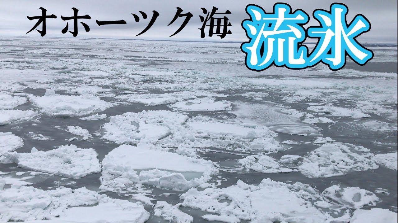 【日本唯一の車窓】流氷を求め、厳冬の釧網本線で砕氷船に乗車しに行こう【圧巻】