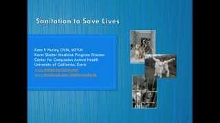 Sanitation to Save Lives