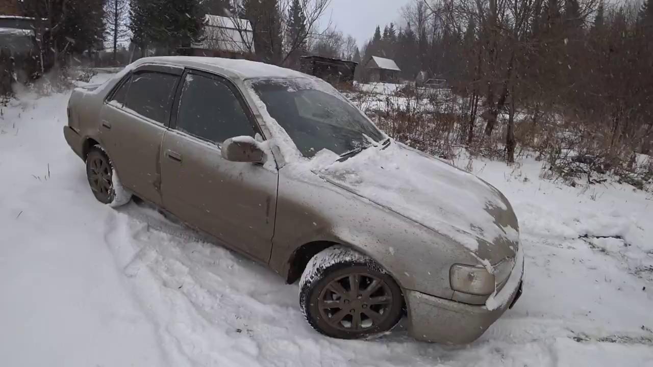 Отзывы о шинах и обсуждение резины nokian nordman 7 на форуме. Здесь вы можете купить шины для своего автомобиля. Сезонность: зимняя.