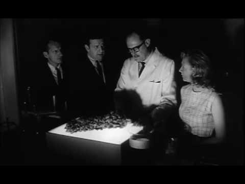 Trailer do filme The Horror of Party Beach