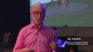 Giant Walkthrough Brain with Jay Ingram