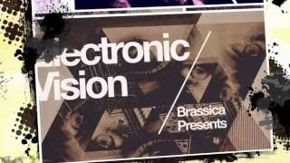 Brassica 'Electronic Vision' - Electro Samples Loops - By Loopmasters