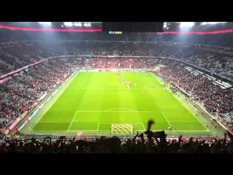Adeptos Sport Lisboa e Benfica Allianz Arena