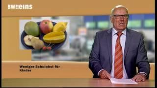BWeins-Nachrichten 18.04.2017