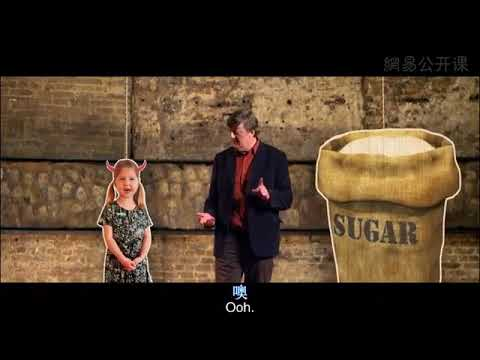 """一部關於""""糖""""的大電影 一部關於糖的大電影 網易公開課"""
