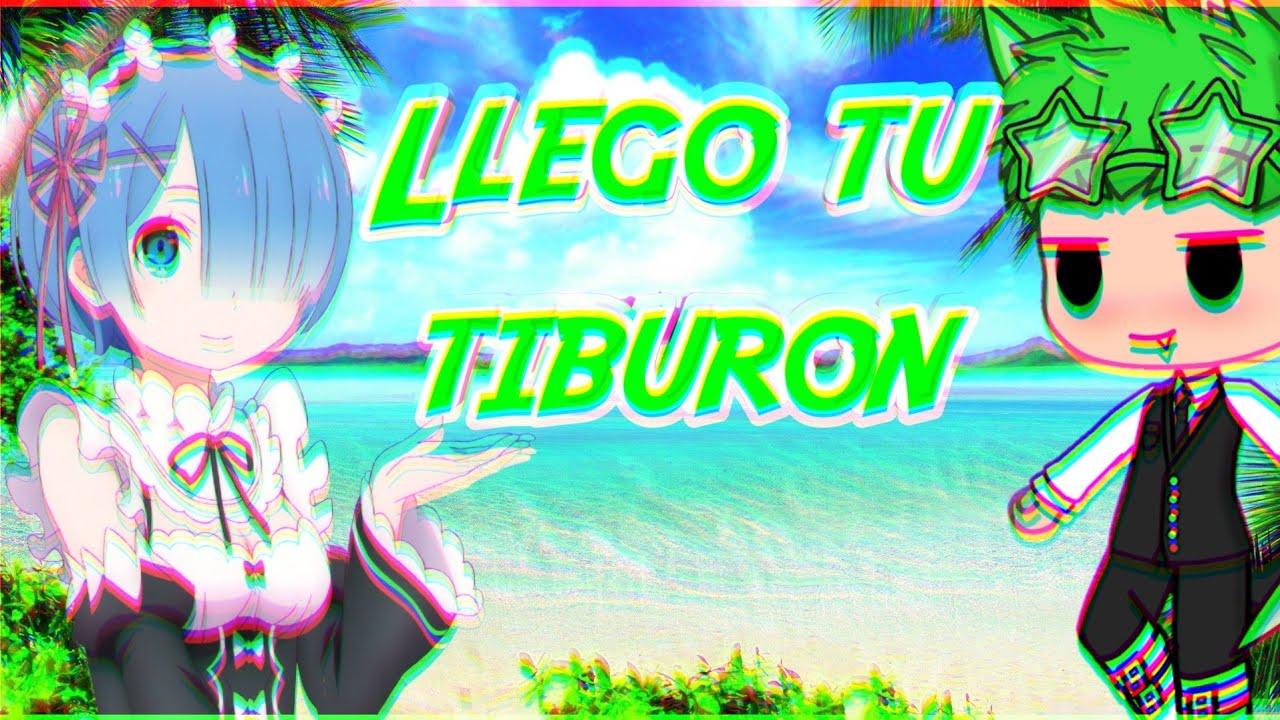 Aqui llego tu tiburon 👊😎🐊meme gacha life 7u7 - YouTube