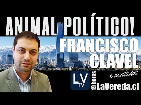Animal Político Lunes 22 con Francisco Clavel e invitados