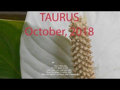 Taurus SECRET OBSESSION - THIRD PARTY OCTOBER 2018 Tarot Reading