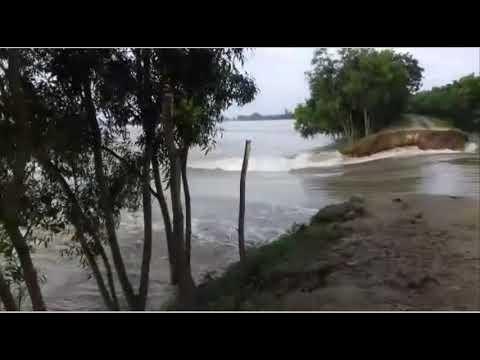 Raiganj  Flood Swept Away a Flood-Guarded Road Part 4 ll Kulik River ll Raigan ll North Dinajpur
