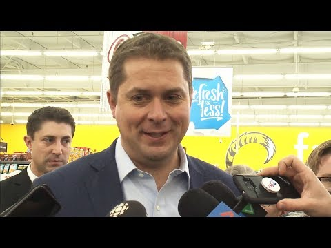 'The year of the carbon tax': Scheer slams Trudeau
