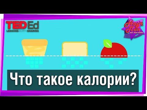 🍫 Что такое калории и сколько их нужно организму? #TED-Ed на русском