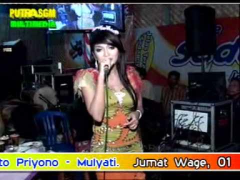 Areva Musik Live Tawang Memilih Setia