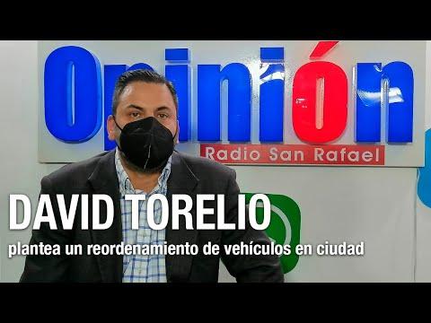 Torrelio plantea un reordenamiento de vehículos en ciudad