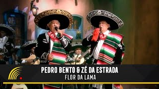 Pedro Bento & Zé da Estrada - Flor da Lama - 55 Anos de Sucesso