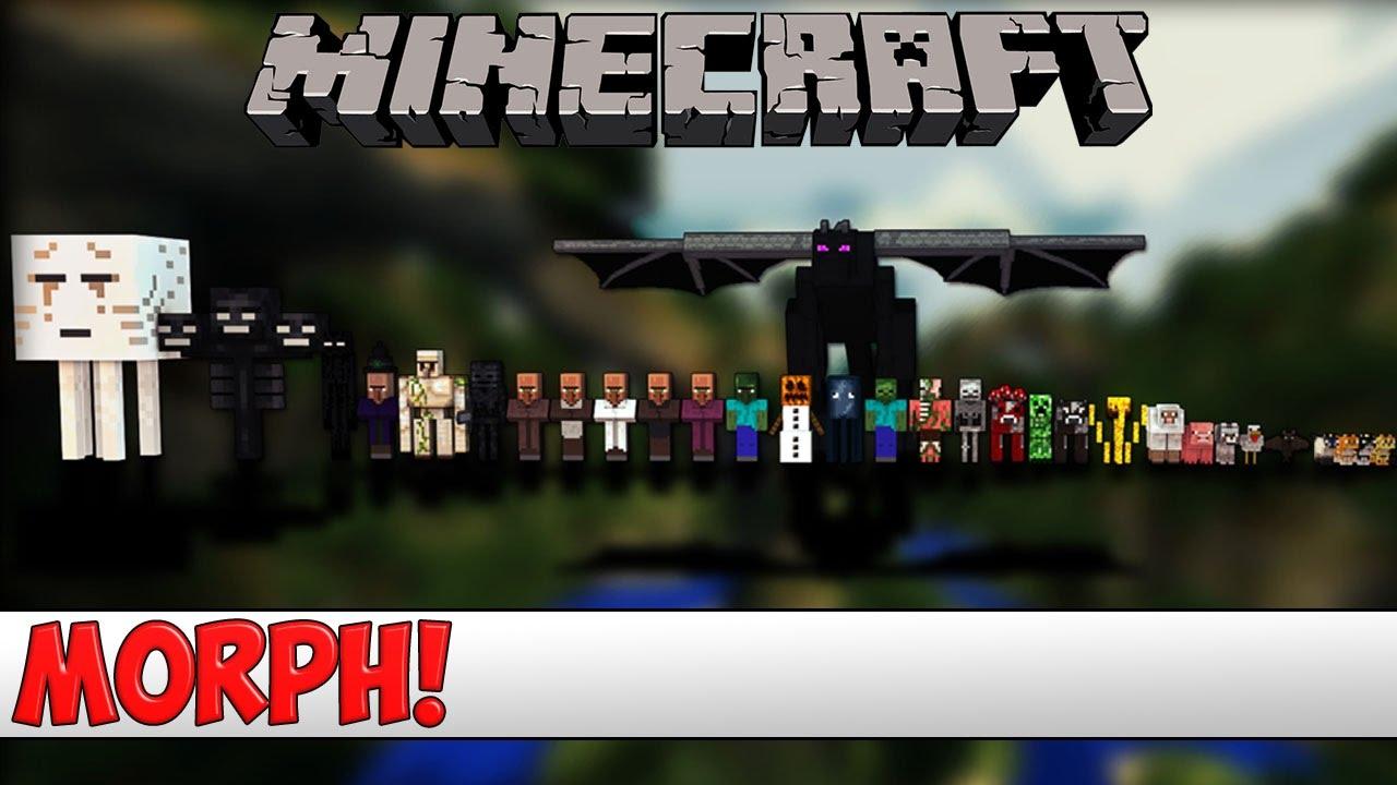 Morph SpigotMC High Performance Minecraft