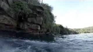 guy meets great white shark after cliff jump