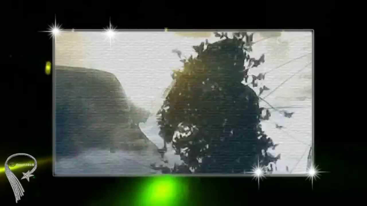 La finestra di fronte youtube - La finestra album ...