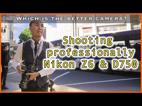 Shooting professionally with a Nikon Z6 and D750, which is the better camera?