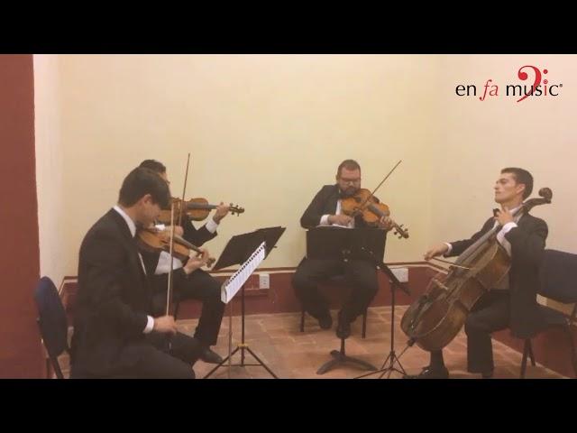 Canon - Cuarteto de cuerdas Querétaro