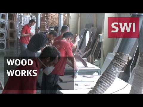 How wood could help boost Kosovo's economy