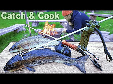 Slingbow Fishing Catch & Cook Sucker Fish- Day 24 Of 30 Day Survival Challenge Maine Lockdown