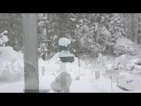 Erie snowstorm