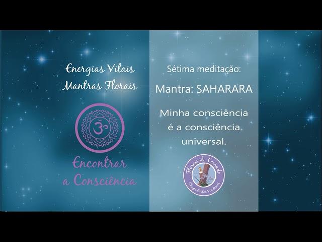 7° Meditação -  Encontrar a consciência