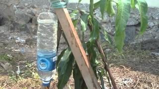 Penyiraman otomatis tanaman