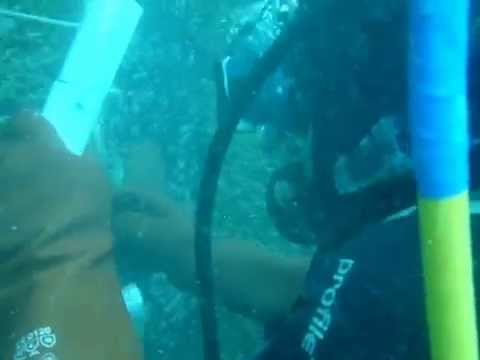 UNDERWATER ZINC ANODES WELDING PROJECT ABU DHABI 0506157033