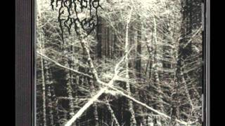 MORBID FOREST - AGONY AND DESPAIR