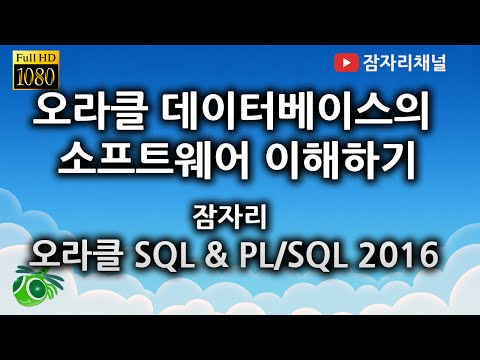 오라클 데이터베이스의 소프트웨어 이해하기 : 오라클 SQL & PL/SQL 강좌 jamjalee oracle tutorial
