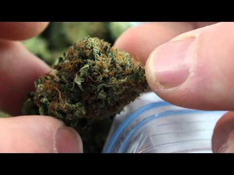 Buy Rockstar Marijuana Review By: McChroanlds