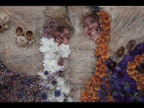 4. Beogradski festival cveća