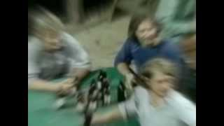 Mission Of Burma - Trem Two [Matador Records]