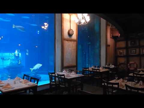 Travel Video - The Cargo Hold Restaurant in Durban, South Africa - South Africa Travel Video