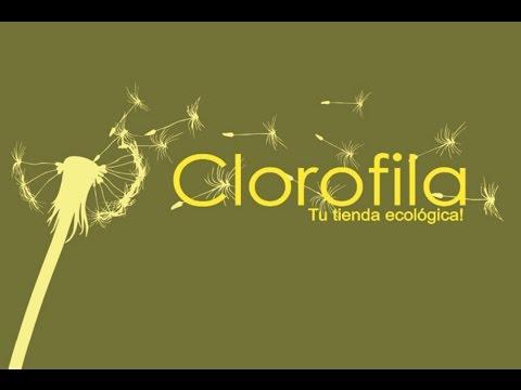 Clorofila, tu tienda ecológica en Bogotá.
