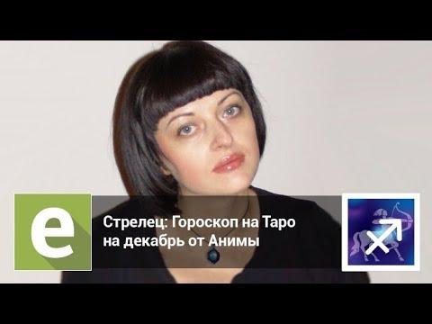 Стрелец — Гороскоп на Таро на декабрь 2018 года от эксперта LiveExpert.ru Анима