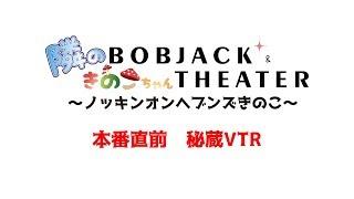 bobkinoko VTR