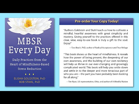 MBSR Every Day Book