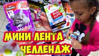 МИНИ ЛЕНТА ЧЕЛЛЕНДЖ Найди за 5 МИНУТ