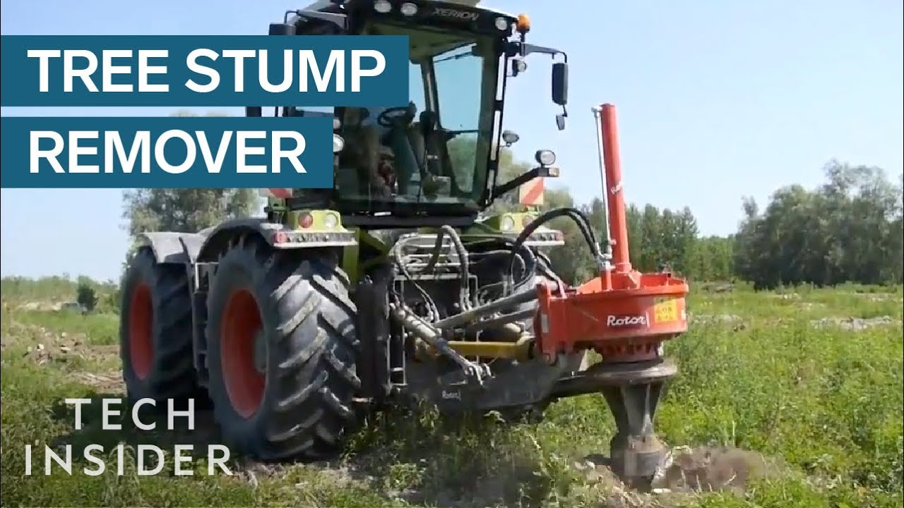 Machine Can Destroy A Tree Stump In Seconds