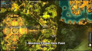 GW2 Auric Basin Hero Points Guide