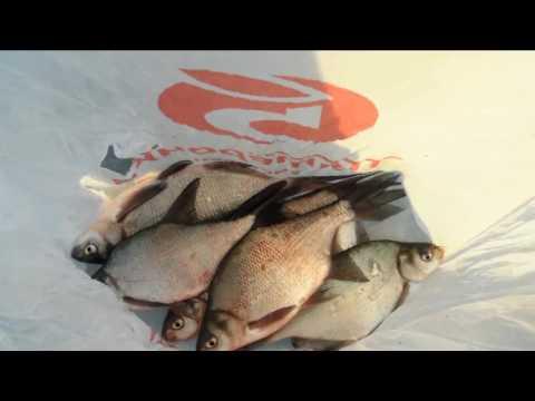 отчет о рыбалке на яузском водохранилище пудыши