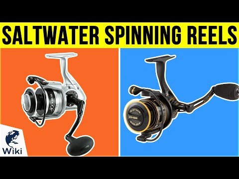 10 Best Saltwater Spinning Reels 2019