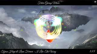 Tyron Hapi & Liam Ferrari - I Like The Way