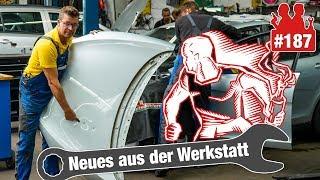 Vollidioten schlagen Seat kaputt! |Bei US-911er sollen die Bumper weg & Holgers Meinung zu Dacia