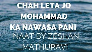 "New naat zeeshan sb ""chah leta jo mohammad ka nawasa pani"" in bazm e shabbir 2016"