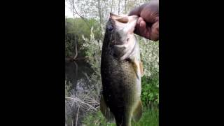 BASS FISHING TIPS 2016 PT 3